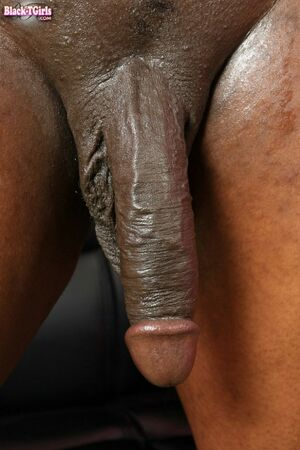 big black cock stroking